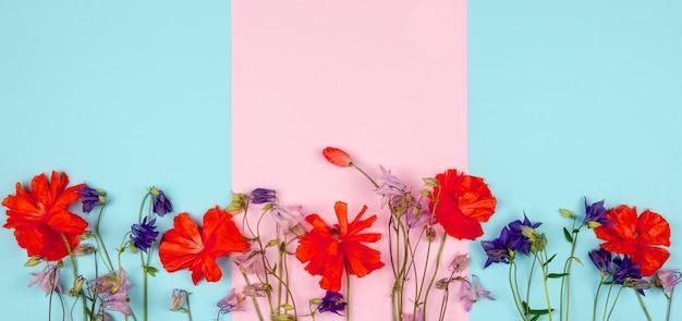 Composizione di fiori selvatici e papaveri rossi su sfondo blu rosa Foto Premium