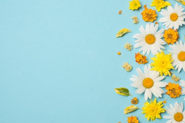 Composizione di meravigliose fioriture brillanti Foto Gratuite