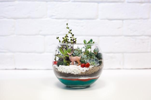 Composizione di piante grasse, pietra, sabbia e vetro Foto Premium