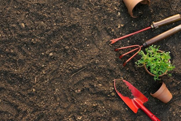 Composizione di strumenti per il giardinaggio sul terreno Foto Gratuite