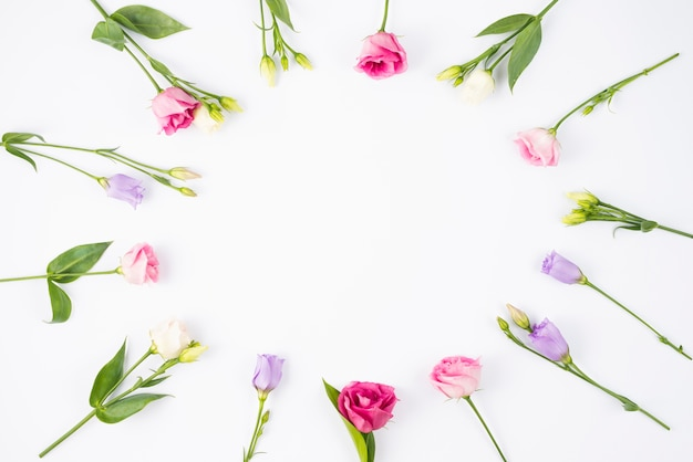 Composizione floreale creando cornice rotonda Foto Gratuite