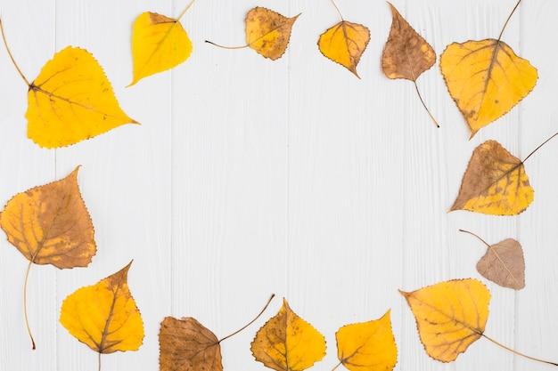Composizione gialla nelle foglie di autunno Foto Gratuite