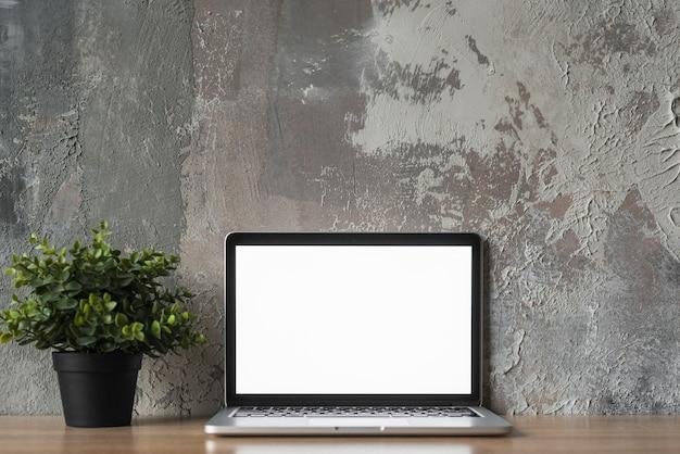 Computer portatile con schermo bianco vuoto e pianta in vaso di fronte al vecchio muro Foto Gratuite