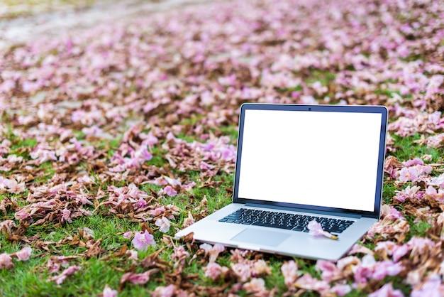 Computer portatili con fiori rosa e sfondo verde erba. Foto Premium