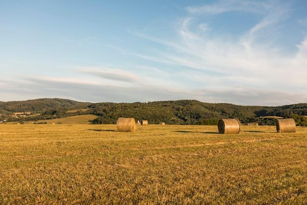 Concetto di autunno con grandi rotoli di fieno Foto Gratuite