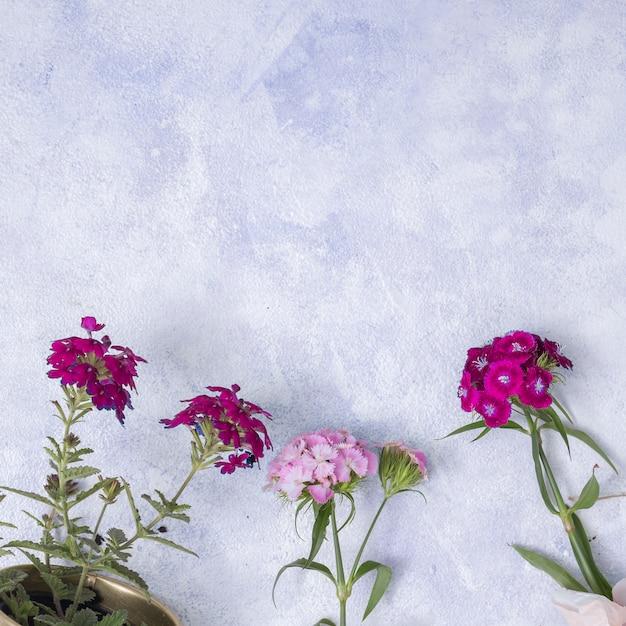 Concetto di giardinaggio piatto laici con copyspace Foto Gratuite