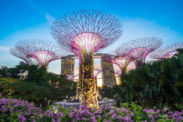 Concetto di viaggio di singapore Foto Premium