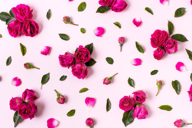 Concetto piacevole dei petali di rosa di vista superiore Foto Gratuite