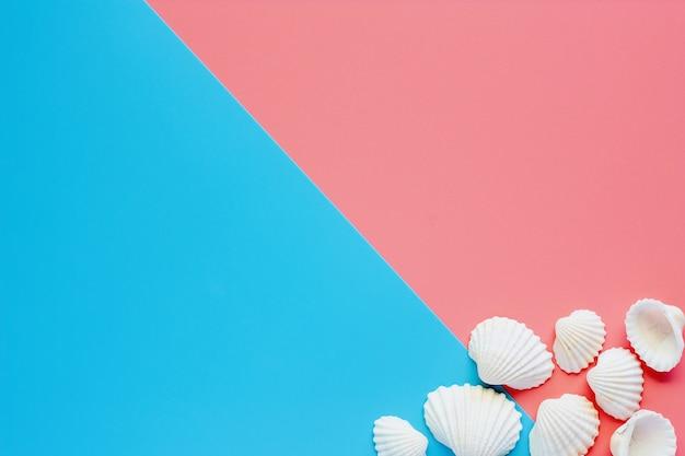 Conchiglie Di Mare Bianco Su Sfondo Rosa E Blu Scaricare Foto Premium