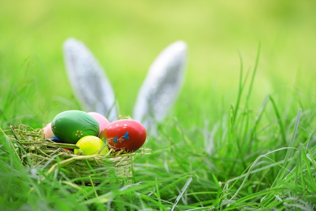 Coniglietto di pasqua ed uova di pasqua sul coniglio dell'orecchio dell'erba sul campo Foto Premium