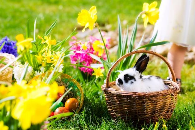 Coniglietto di pasqua sul prato con il cestino e le uova Foto Premium