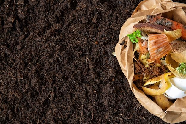 Controllo ambientale. separazione dei rifiuti alimentari nei pacchetti ambientali. Foto Premium