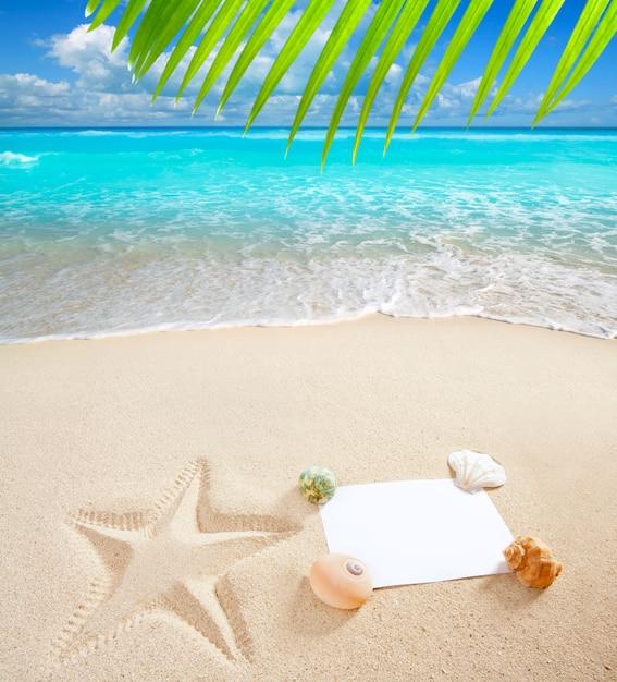 Coperture delle stelle marine dello spazio in bianco della copia in mare del mare caraibico della spiaggia Foto Premium