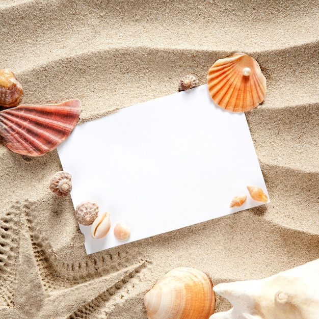Copyspace spazio vuoto estate stelle marine sabbia conchiglie Foto Premium