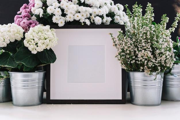 Cornice bianca circondata da bellissimi fiori in vaso Foto Gratuite