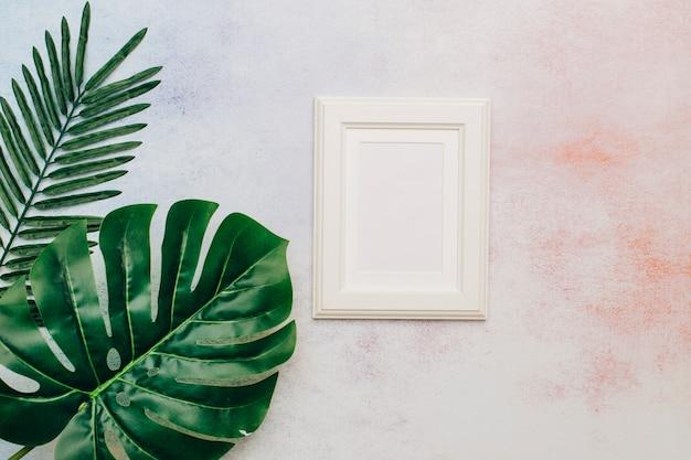 Cornice bianca con foglie tropicali Foto Gratuite