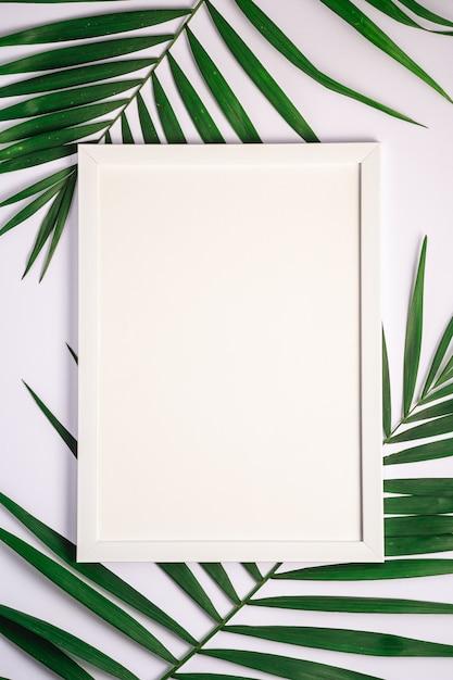 Cornice bianca con il modello vuoto sulle foglie di palma, fondo bianco, carta del modello Foto Premium