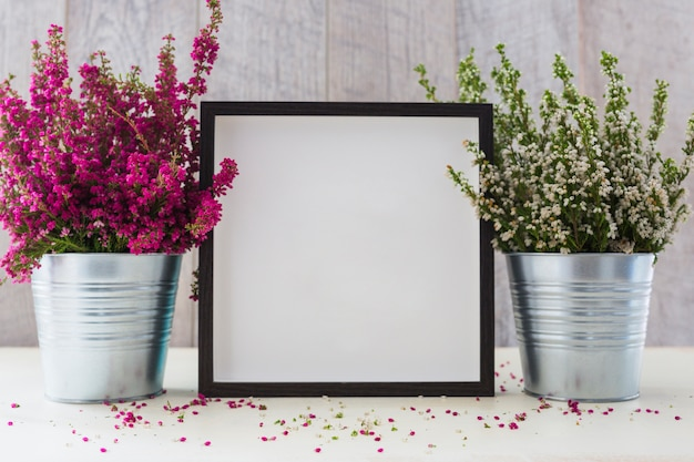 Cornice bianca tra le due pentole in alluminio con piccoli fiori sulla scrivania Foto Gratuite