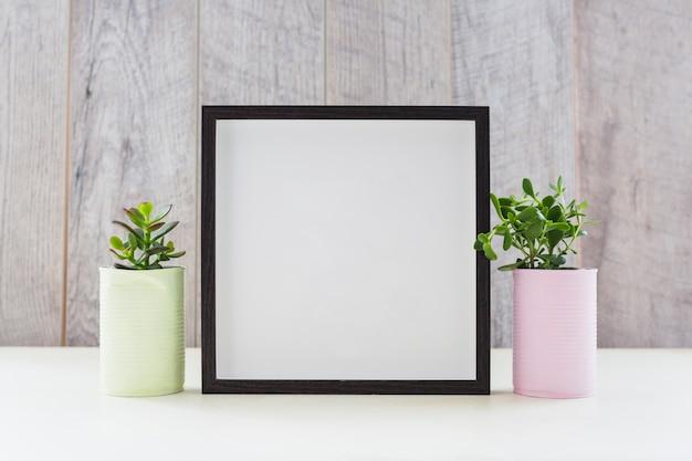 Cornice bianca tra le due piante nei contenitori di riciclo Foto Gratuite