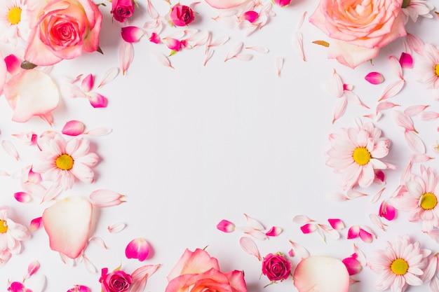 Цветы рисунок пионы