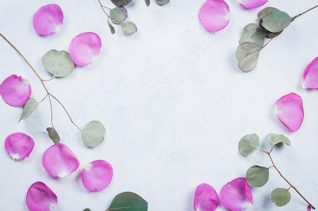 Cornice da petali di rosa e rami di eucalipto Foto Premium
