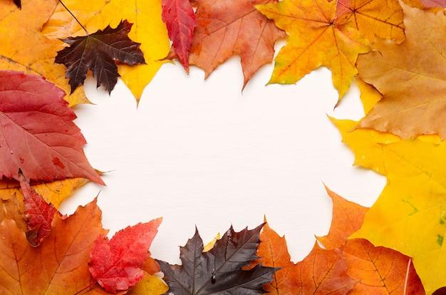 Cornice dell'autunno giallo, rosso e viola foglie d'autunno Foto Premium