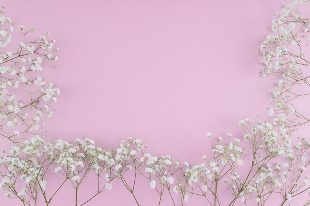 Cornice di fiori bianchi vista dall'alto Foto Gratuite