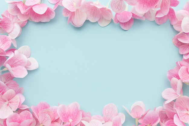 Cornice di fiori di ortensia rosa laici piatta Foto Gratuite