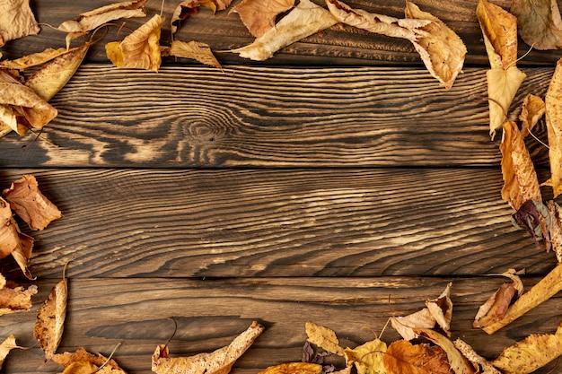 Cornice di foglie con spazio di copia Foto Gratuite