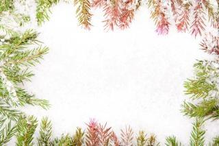Cornici Foto Di Natale.Cornice Di Natale Decor Scaricare Foto Gratis