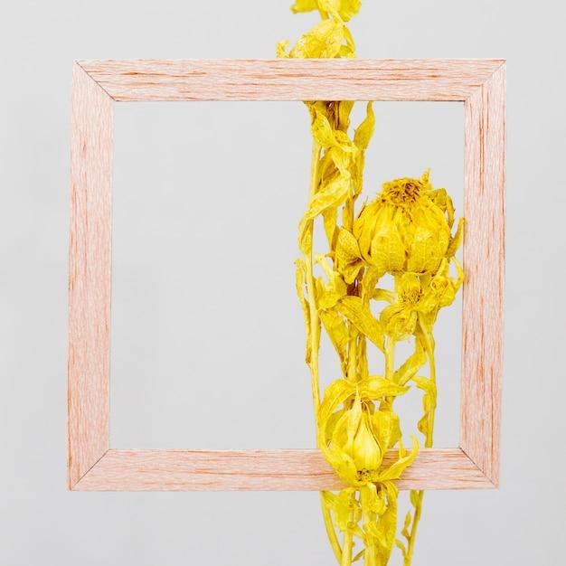 Cornice in legno con ramo di fiori Foto Gratuite