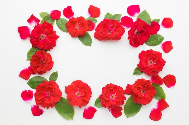 Cornice piatta con rose e foglie di iceberg Foto Gratuite