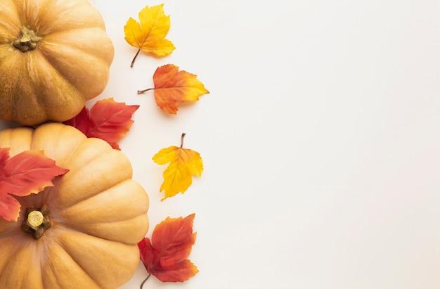 Cornice piatta con zucche e foglie colorate Foto Gratuite