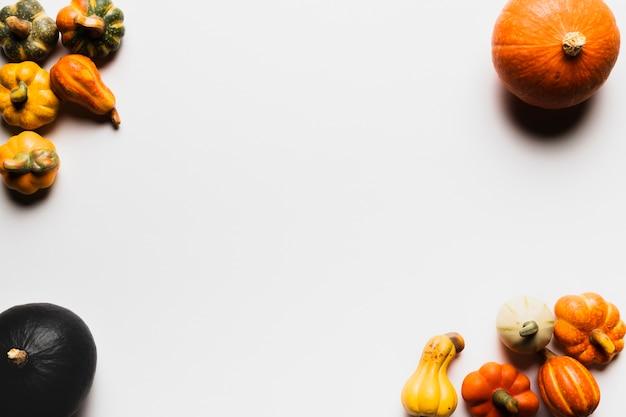 Cornice vista dall'alto con zucche su sfondo bianco Foto Gratuite