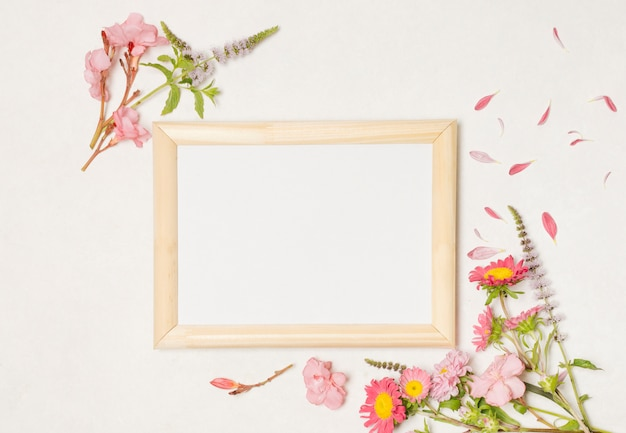 Cornici fotografiche tra composizione di meravigliosi fiori di rosa Foto Gratuite