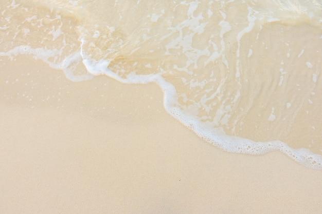 Costa rilassarsi blu oceano di cocco Foto Gratuite