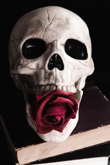 Cranio umano con rosa sui libri Foto Gratuite