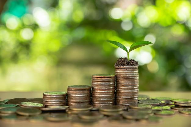 Crescita del denaro risparmio di denaro. Foto Premium