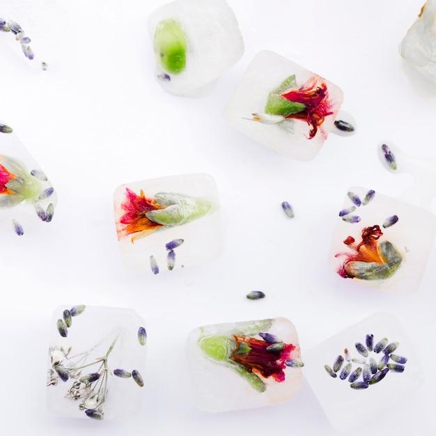 Cubetti di ghiaccio decorativi fatti in casa con fiori Foto Gratuite