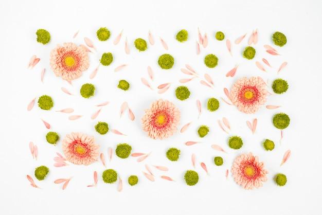 Decorato sfondo bianco con fiori di gerbera Foto Gratuite