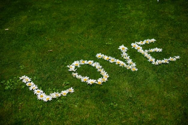 Decorazione di nozze può essere usato come sfondo Foto Premium