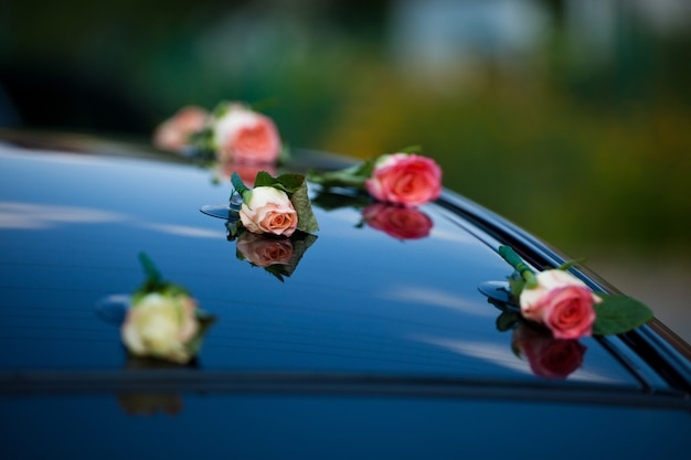 Delicati boccioli di rosa rosa messi sul cofano dell'auto Foto Gratuite