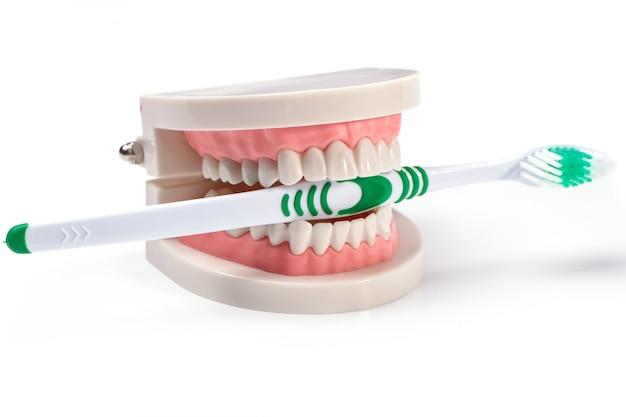 Denti bianchi Foto Gratuite