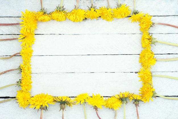 Denti di leone gialli su fondo di legno bianco. fiori selvaggi su vecchio fondo di legno. Foto Premium