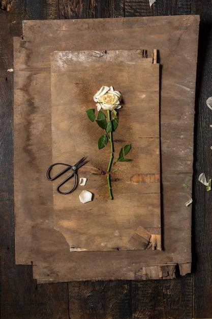 Desktop fiorista con strumenti di lavoro Foto Gratuite