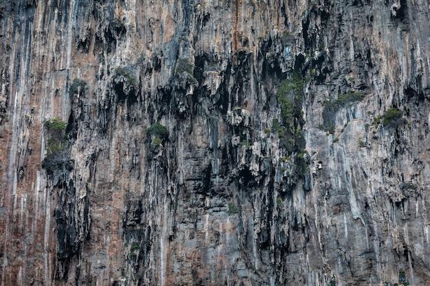 Dettagli di struttura della scogliera della roccia sull'isola della tailandia di kra del mare Foto Premium