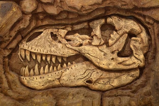 Dinosauro, fossile Foto Premium