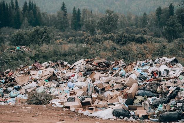 Discarica illegale in mezzo alla foresta e al campo. montagne di immondizia Foto Premium