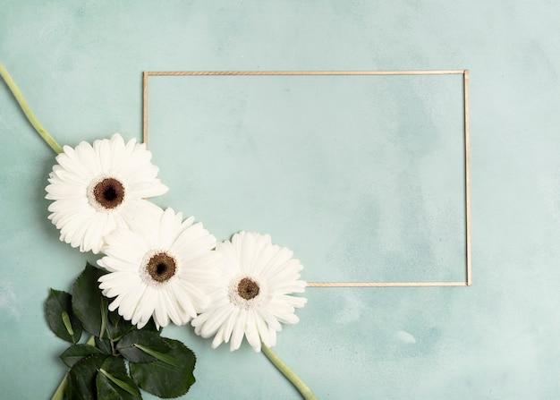 Disposizione carina di fiori freschi bianchi e cornice orizzontale Foto Gratuite
