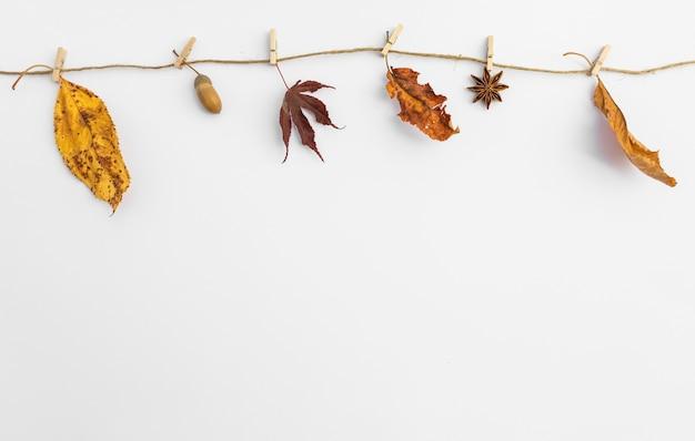 Disposizione con foglie appese su stendibiancheria Foto Gratuite